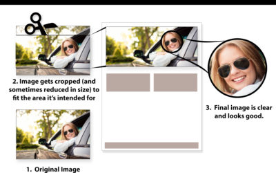 Selecting images for your website or printed materials